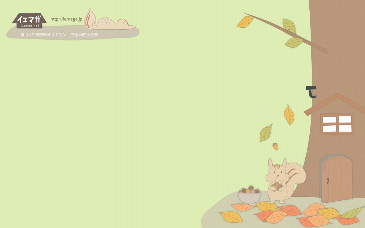 リスの秋 壁紙 1280×800