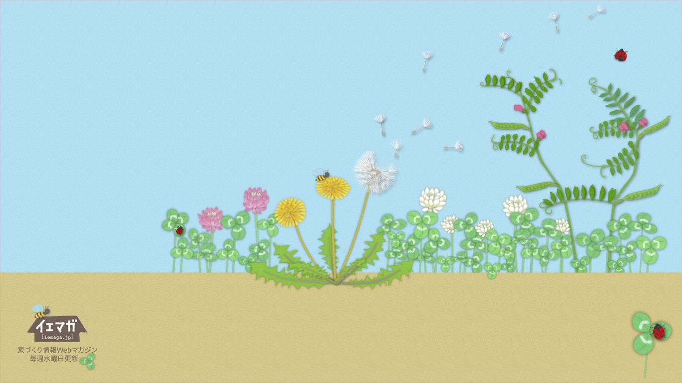 春の草花 壁紙 1366×768