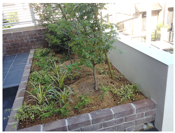 植物に必要な深さとコンクリートを抜ける水はけが大切です。