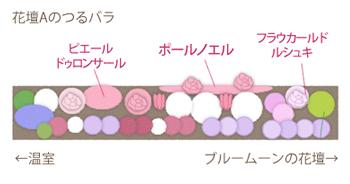花壇Aの造り始め当初の植物の配置図です。