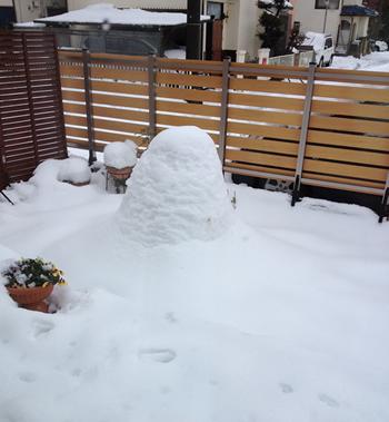 2014年に、15cmを超える大雪に見舞われました。 柱なしタイプ・柱ありタイプのどちらのテラス屋根でも20cm程度の積雪まで対応できる仕様でしたが、招き屋根から降りてくる雪が20cm以上を余裕で超えていたので、やはり柱があってよかったと思います。