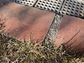 レンガは、少しでも土を掘る手間を減らすために、「はんぺん」と言われる普通のレンガより半分の薄さのタイプを選びました。土に埋まる部分が少なく心配でしたが、芝生とジョイントスノコに挟まって特にずれる不具合は出ていません。